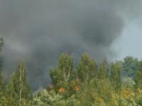 Завидев огонь в соседней деревне, глава Поддорского района вызвала пожарных