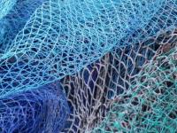 Двух рыбаков-нелегалов из Старой Руссы «выловили» правоохранительные органы