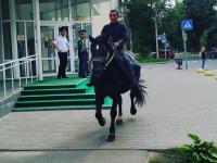 Фотофакт: новгородец приехал на коне голосовать на выборах в гордуму