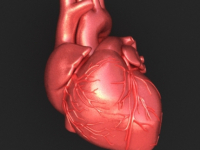Информация для тех, кто хватается за сердце. Или не хочет этого делать