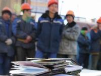 В Чудовском районе задержали 20 нелегальных строителей М-11