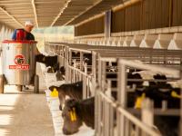 На молочно-товарном комплексе в Крестецком районе внедрят технологию «цифрового стада»