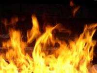 Ночью на пожаре в Солецком районе спасли женщину и дом неподалеку