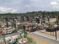 Новгородским депутатам не понравилась идея перекинуть кладбищенские деньги на парковку у «Витославлиц»