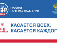 Более миллиона россиян приняли участие в первом цифровом этапе пробной переписи населения