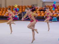 Фото: в Великом Новгороде соревновались гимнастки-художницы