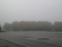 Фоторепортаж: Великий Новгород окутало белой пеленой