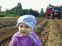 Малышка Милана Гелетей принесла удачу знаменитой фермерской семье