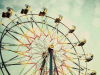Новгородцы предложили установить в парке Юности сухой фонтан и колесо обозрения