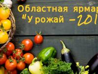 Новгородцы смогут купить качественную продукцию сельхозпроизводителей области