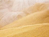 Пожар в Шимске повредил девять тонн православного зерна