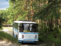 Пропавшая в новгородском лесу пенсионерка могла уехать в соседнюю область