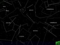 Скоро жители Новгородской области смогут наблюдать метеорный поток Дракониды