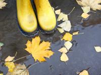 Совет дня: страдаете от падения атмосферного давления – выходите на улицу!