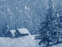 Стало известно, когда придут морозы и снегопады