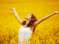 Тема сегодняшней программы «София» на НТ — счастье