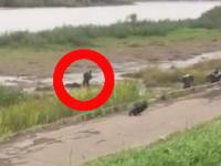 Видео: в Великом Новгороде пьяного мужчину волокли из реки по грязи десятки метров