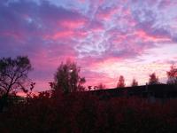 Жители Великого Новгорода и области поделились фотографиями впечатляющего заката