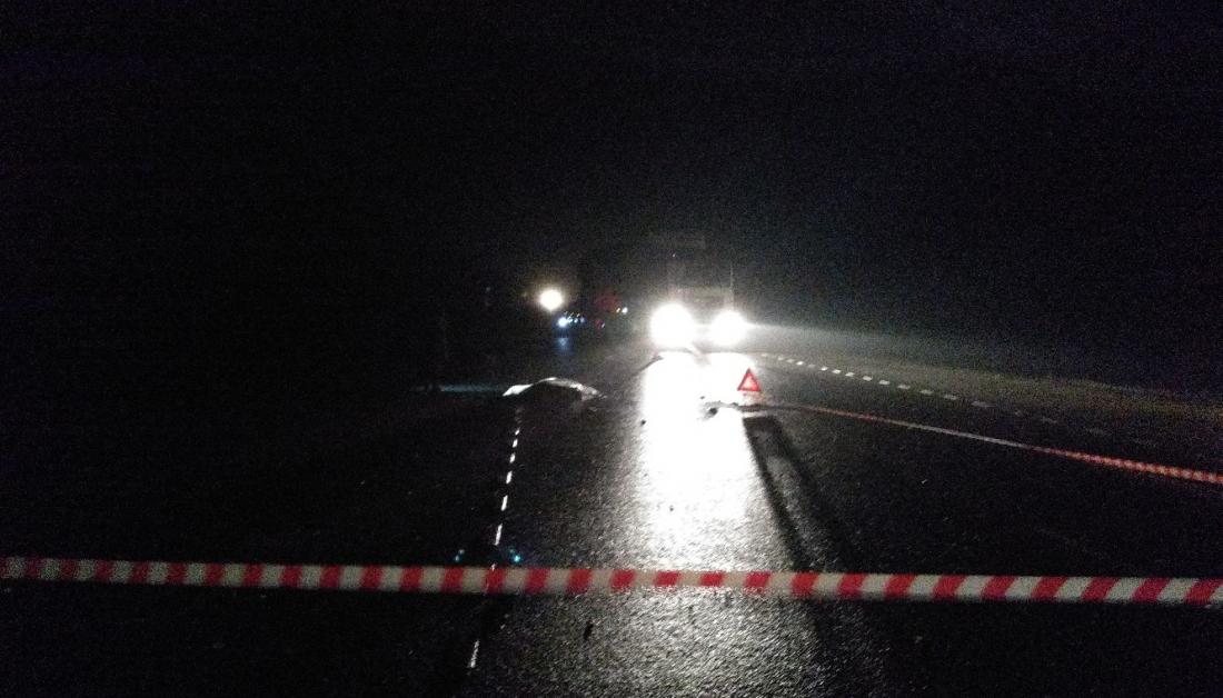 На М-10 в Новгородском районе водитель большегруза насмерть сбил мужчину и скрылся