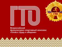 17 тысяч новгородских школьников познакомились с историей ГТО