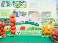 Фоторепортаж: старт Агропромышленной недели в Новгородской области