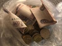 Маленький боровичанин отдал все свои сбережения бездомышам