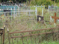 Кладбища более 20 новгородских деревень содержатся с нарушениями