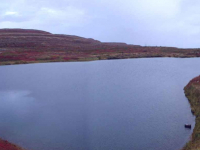 На Северо-Западе России в ядовитом озере Могильное исчезла пресная вода