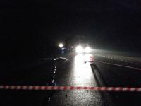 На трассе в Новгородской области грузовик насмерть сбил пешехода