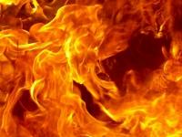 Бабушка, мама и четверо детей погибли на пожаре в Псковской области