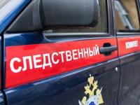 Следком: в Новгородской области резко возросло количество сексуальных преступлений против детей
