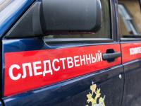 Следствие: погибшая на пожаре в многоквартирном доме в Окуловке женщина не является виновницей ЧП