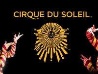 Эдгард Запашный опасается, что Cirque du Soleil осядет в Сколково. Президент обещал разобраться