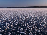 Фантастическое явление на Валдайском озере запечатлел фотограф Тимофей Шутов