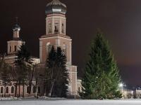 Глава Валдайского района вновь сам выбрал ель для центральной площади города