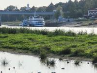 К концу января в Великом Новгороде разработают проект по расчистке дна Волхова