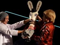 В эти выходные кролика Эдварда впервые ждут приключения на сцене новгородского театра «Малый»