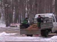 В Великом Новгороде применили остроумный способ посыпки улиц песком