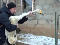 Премьер Мариинского театра посетил в Новгородском районе раненого друга