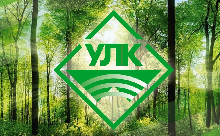 «УЛК» продолжит развивать Пестовский район: к 2023 году там появится Ледовый дворец