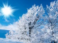 Какая погода встретит жителей Центральной России в первые рабочие дни?