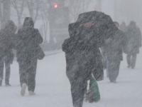 МЧС призывает новгородцев готовиться к сильному ветру и метелям