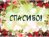 Новгородская семья Лисихиных благодарит за рождественское чудо