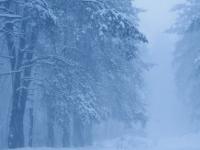 Ожидать ли морозов в Крещенскую ночь?