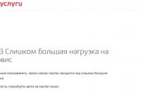 На «горячей линии» пояснили, почему сайт Госуслуг пока не выдерживает наплыва родителей первоклассников