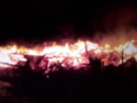 Страшный пожар в Окуловском районе унес жизни шести человек. Среди них есть дети