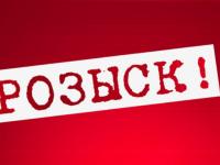 В Новгородской области ищут водителя, сбившего на трассе М-10 пешехода