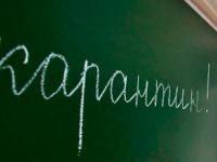 В школах Новгородской области из-за гриппа и ОРВИ закрыто уже 77 классов