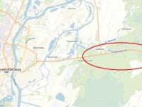 Водители предупреждают об «огромных» лосях вдоль трассы в Новгородском районе