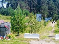 Жители поселка Боровёнка мечтают благоустроить свою аллею Победы